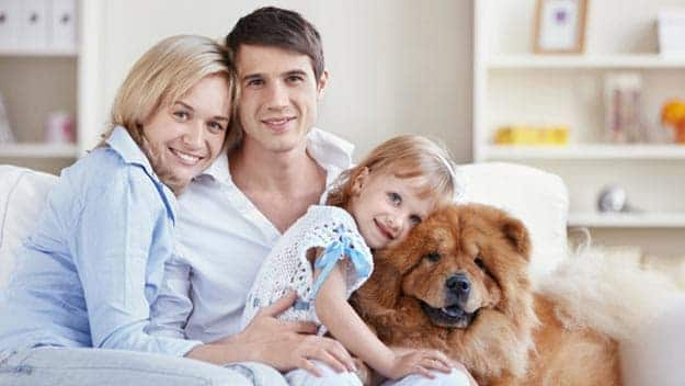 Wills & Trusts dog-young-family Direct Wills Bethnal Green